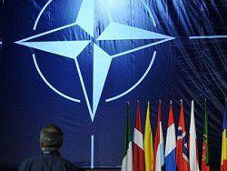 Депутат бундестага: стремление Украины войти в НАТО нереалистично