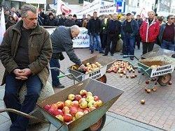 Россия вернула в Белоруссию 190 тонн фруктов