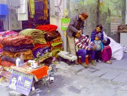 индийское лекарство от паразитов