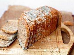 Литва: в лучшей гостинице на завтрак — заплесневелый хлеб