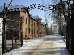Схетына: Освенцим освобождали прежде всего украинцы