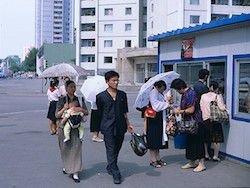 Что творится с курсом доллара и ценами в Северной Корее