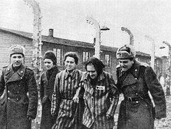 Новость на Newsland: Освобождение Освенцима – подвиг Красной армии