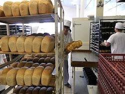 Новость на Newsland: Хлеб в России подорожал на 20 процентов
