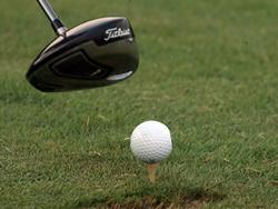 Новость на Newsland: В российские школах будут учить играть в гольф