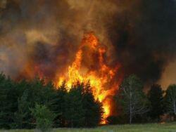 Россию ждет вдвое больше природных катастроф