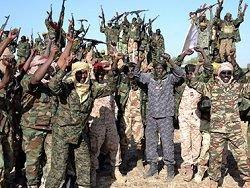 "Армия Чада уничтожила 207 боевиков ""Боко Харам"" в Нигерии"