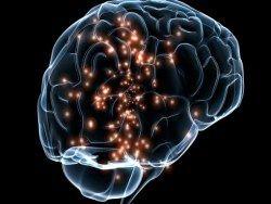Российские ученые создают установку для изучения мозга
