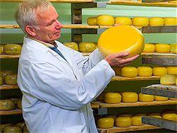 Россельхознадзор намерен разрешить экспорт украинского сыра
