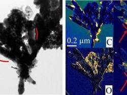 Ученые создали новые синтезированные наночастицы