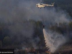Новость на Newsland: ГСЧС: в зоне Чернобыля 70% пожаров вызваны поджогами