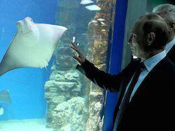 В Москве появился крупнейший центр океанографии