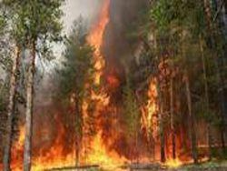Бурятия: все лето в огне