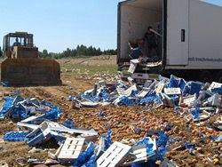 Россельхознадзор снизил темпы уничтожения продуктов