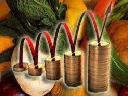 Эксперт: у роста цен на продукты в РФ нет потолка