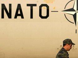 Исследование: доверие к НАТО за несколько месяцев резко упало