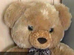 """Видео """"казни"""" плюшевого медведя малышом из ИГИЛ попало в сеть"""