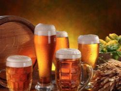 Новость на Newsland: В Сербии прошли соревнования по скоростному распитию пива
