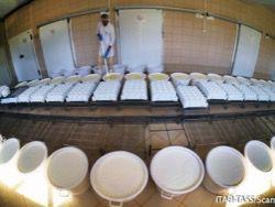 Новость на Newsland: ЕС накормит беженцев излишками запрещенной в РФ еды