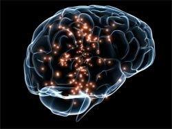 """Роботов оснастили """"GPS-нейронами"""""""