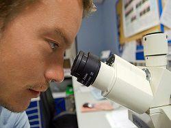 Ученые выделили четыре гена, связанные с долголетием