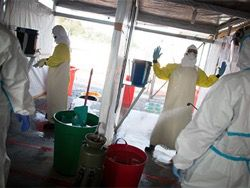 Путин сообщил о появлении самого эффективного лекарства от Эболы