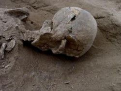 Останки древних собирателей