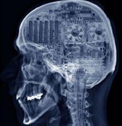В 2008 году человеческий мозг подключат к компьютеру