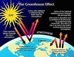 Увеличение содержания углекислого газа не причина, а следствие потепления