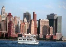 В Нью-Йорке участились случаи нападения крыс на автомобили