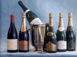 Бельгийцы любят шампанское больше всех