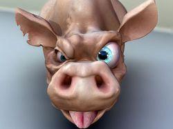 Свиньи и телевизоры: Что общего?