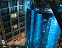 AquaDom – самый огромный аквариум в Германии (видео)