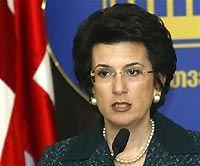 Нино Бурджанадзе: Я проголосовала за НАТО и стабильность Грузии