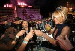 Как звезды Голливуда справили Новый год (фото)