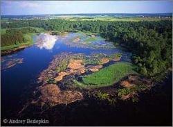 Главный источник питьевой воды для Москвы - Истринское водохранилище - крупнейший отстойник для дерьма