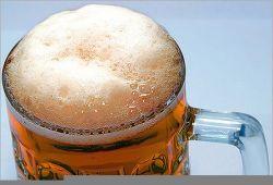 Чешское пиво в 2008 году подорожает на 25%