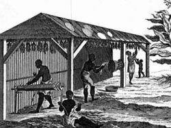 Нью-Джерси первым из северных штатов извинился за рабство
