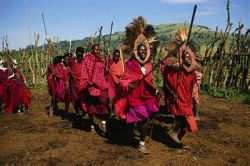 Кенийские мародеры добровольно возвращают награбленное, испугавшись страшного проклятия