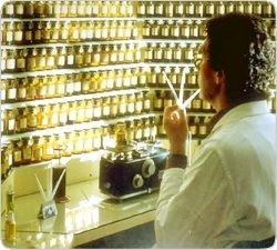 Запах Крысы или самые ожидаемые парфюмы 2008 года