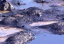 Экологи: утечка мазута в Королеве может вызвать экологическое бедствие во Владимирской области