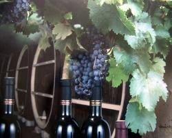 Молдавия экспортировала в Россию почти 1 миллион литров вина