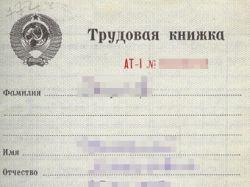 На москвичей заведут еще одну базу данных