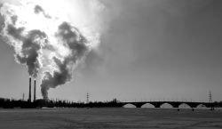 Загрязнение воздуха Земли приводит ежегодно к 20 тыс. смертей, считают ученые