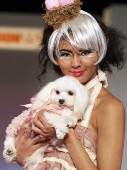 New Year Dogs Party - показ моды для собак в Токио (фото)