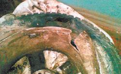 Геннадий Бачинский погиб из-за лопнувшего колеса