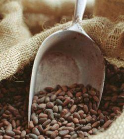 Сотрудники Биржи кофе и какао в Кот'д'Ивуаре (Coffee and Cocoa Bourse, BBC) начали забастовку