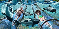 Во Флориде откроется уникальный водный парк