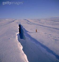 WWF призывает к мораторию на добычу нефти в Арктике