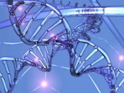 Связанная с Google фирма предлагает европейцам сделать анализ ДНК через интернет